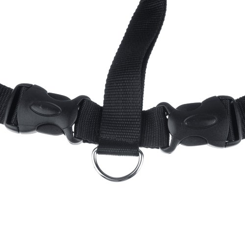 5x ceinture de s curit universelle pour chien pour les si ges de voiture l y3 ebay. Black Bedroom Furniture Sets. Home Design Ideas