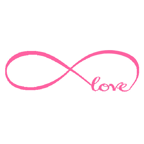 Love Infinity Symbol Vinyl Wall Stickers 5 Butterflies