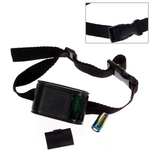 cloture invisible anti fugue collier electrique pour chien 300m de fil wd ebay. Black Bedroom Furniture Sets. Home Design Ideas