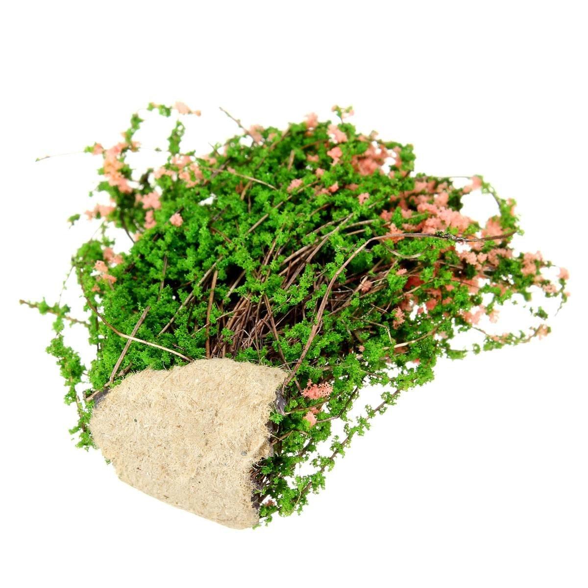 Miniature plants fairy garden accessories dollhouse - Miniature plants for fairy gardens ...