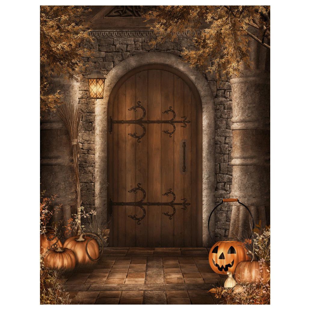 Halloween Vinyl Photography Backdrop Retro Door Photo Background 5x7ft  BT