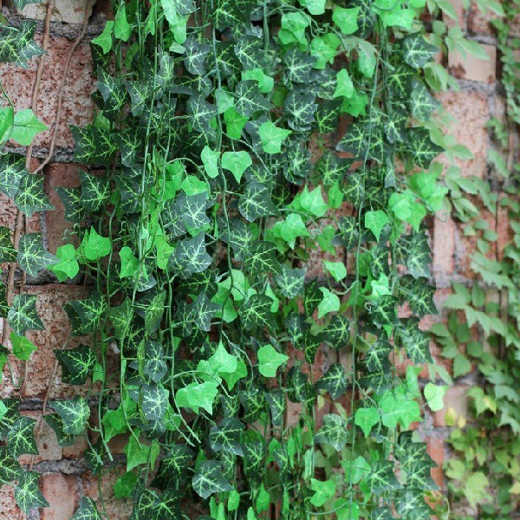 12 x kuenstliche efeu weinlaub pflanzen zu hause for Pflanzen zu hause