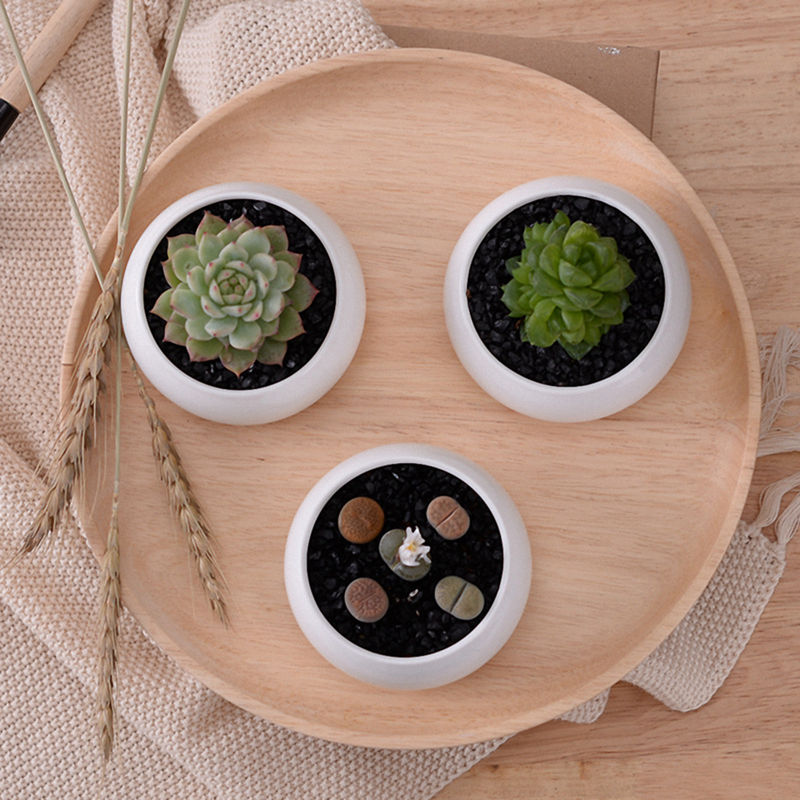 Small Round Windows: Decorative Small Round Succulent Plant Pot 3 Tier Bamboo