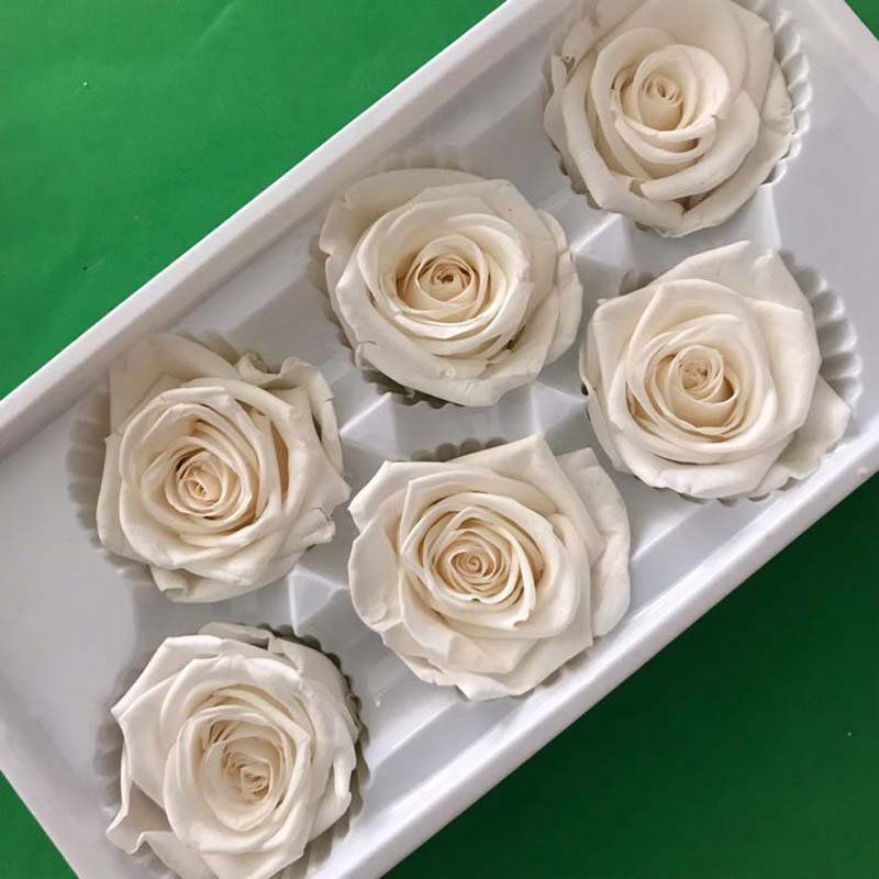 Eternal Roses Heads,Real Natural Fresh Preserved Rose,Beauty And The Beast T4T5
