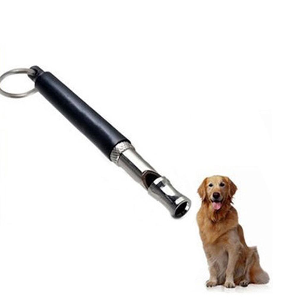 Best Silent Dog Training Whistle