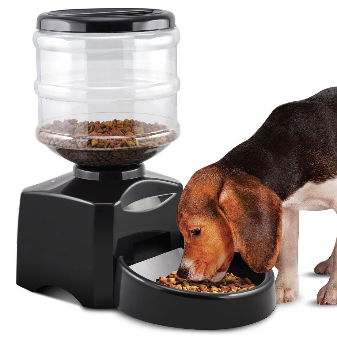 5l distributeur de nourriture automatique pour chat chien auto distributeur b8z7 ebay. Black Bedroom Furniture Sets. Home Design Ideas