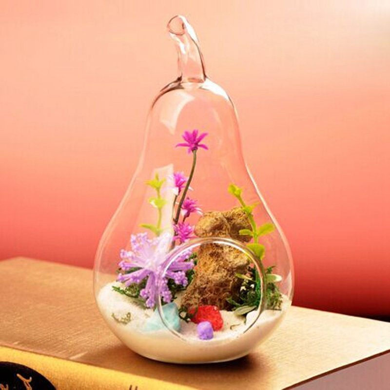 1X-Vase-a-fleurs-en-verre-transparent-la-decoration-de-fleur-et-de-plante-A4P3 miniature 3