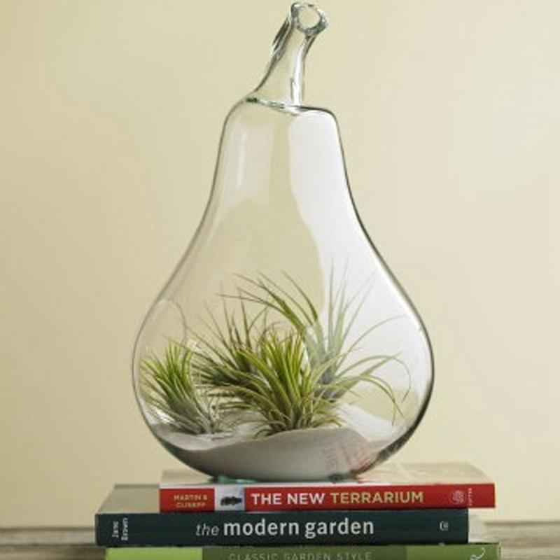 1X-Vase-a-fleurs-en-verre-transparent-la-decoration-de-fleur-et-de-plante-A4P3 miniature 4