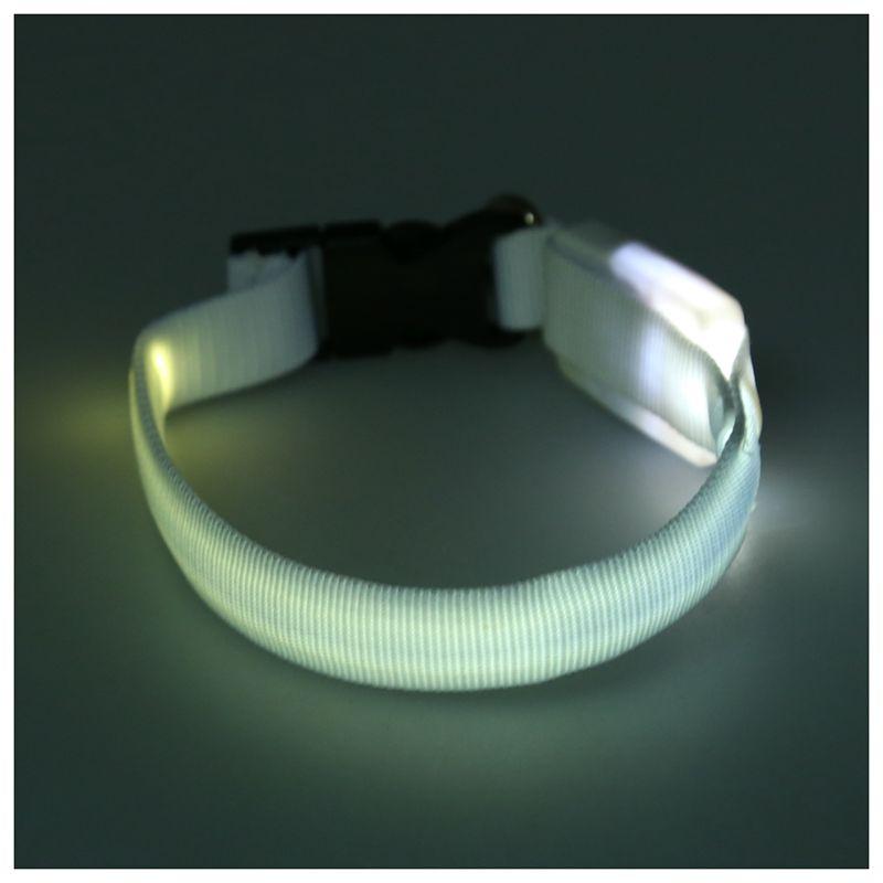 Collar-de-seguridad-iluminado-intermitente-de-mascota-perro-gato-LED-de-bril-PB