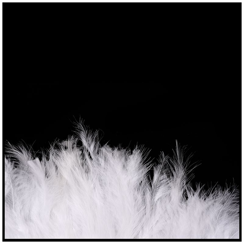 Phantom-Party-Supplies-Fluffy-Feather-Hand-Fan-Fancy-Elegant-Props-New-WhitQ2X2 thumbnail 5