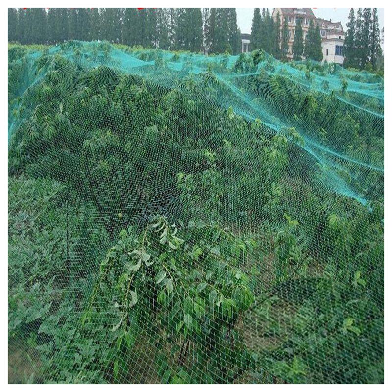 4x10m-Green-Anti-Bird-Netting-Plant-net-Fruit-Tree-Bird-Netting-P3C2-SHJ