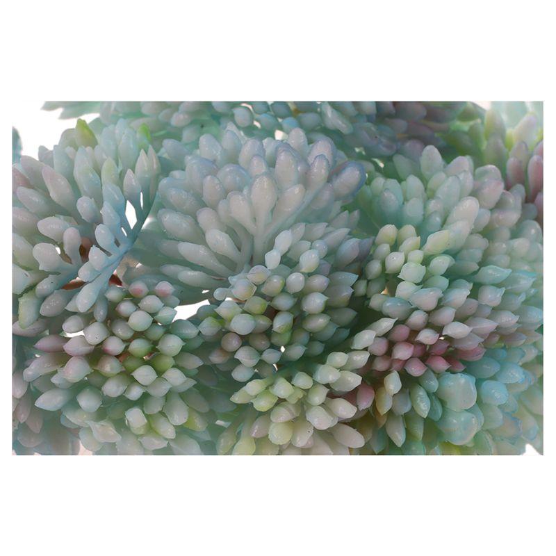 Fruit-Seltene-Garten-Sukkulente-Gras-Wueste-Kuenstliche-Pflanze-Landschaft-Ge-L1S5 Indexbild 21