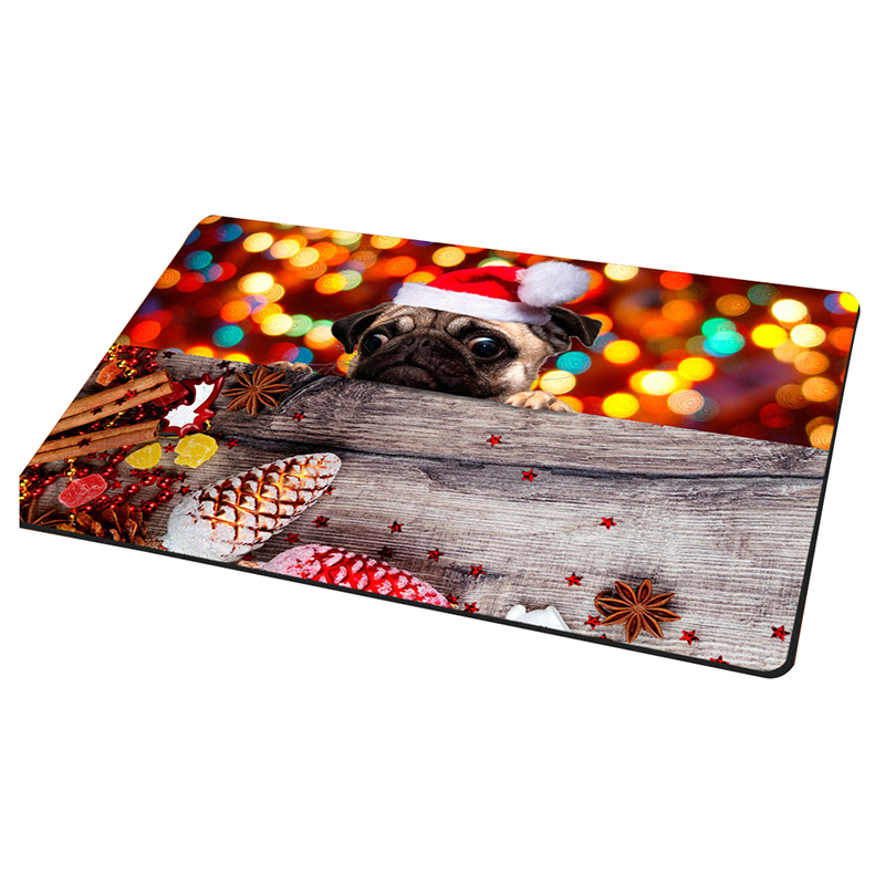 Cute-Christmas-Animal-Doormat-Indoor-Non-slip-Kitchen-Bathroom-Carpet-Bathmat-D9
