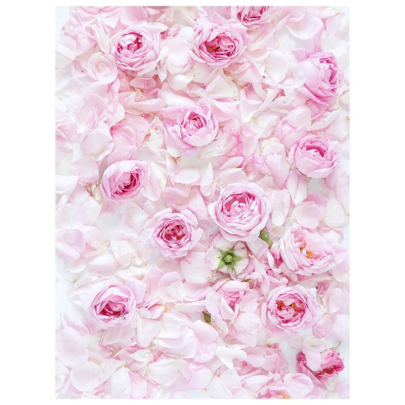 Details About 5x7ft Photography Backdrop Pink Rose Flower Wall Wedding Love Baby Shower F A3q3