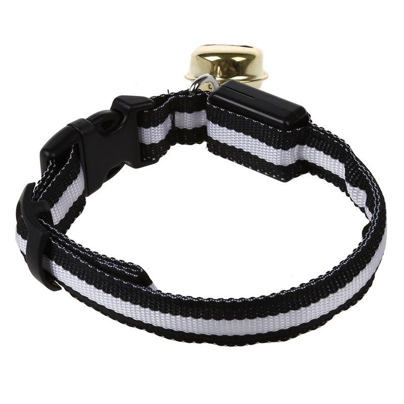 10X-Glow-LED-Cat-Dog-Pet-Collar-Flashing-Light-Up-Safety-Collar-Red-M-N9N6 thumbnail 13