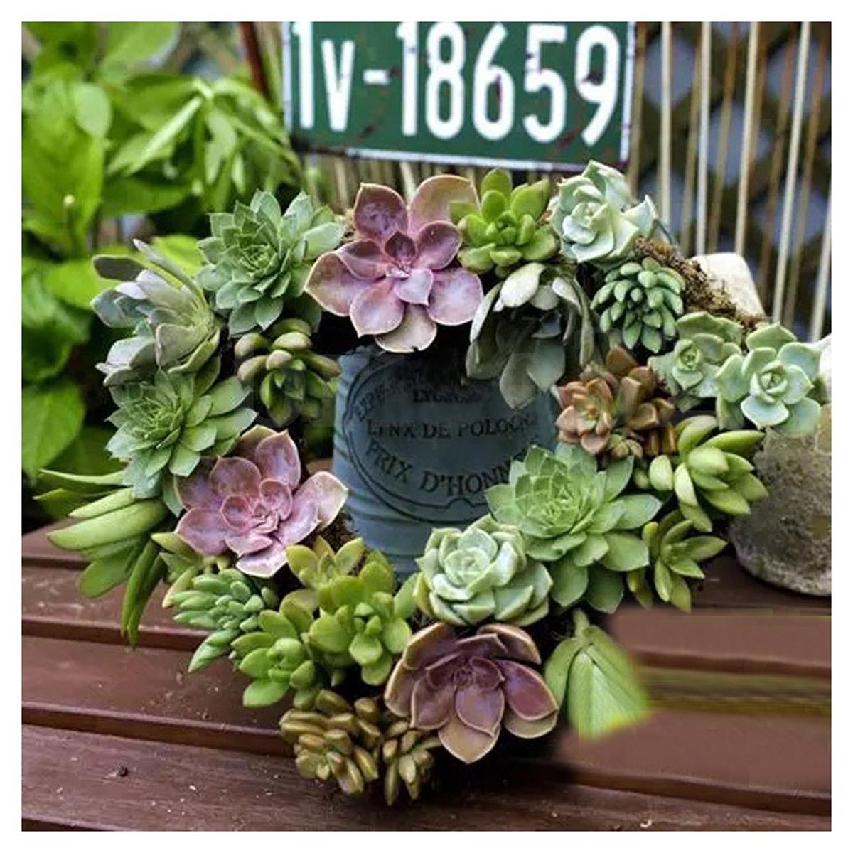 Heart Iron Hanging Plant Basket Garden Succulent Flower Pot Hook ...