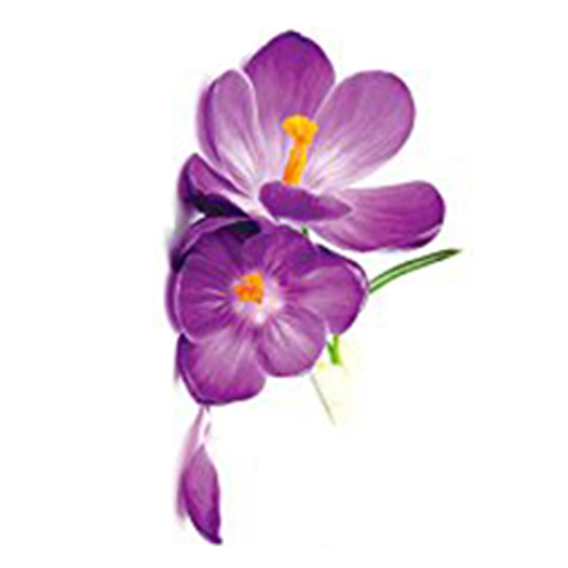3D Purple Large Flower Mural Removable Wall Stickers Decals Home Room Decor G8P4