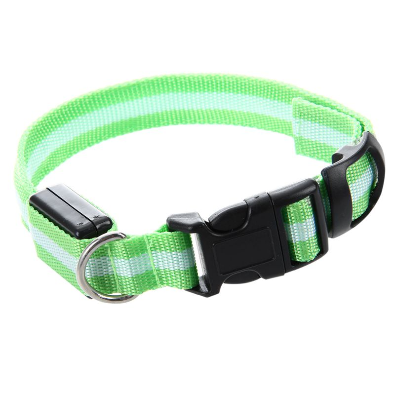 10X-Glow-LED-Cat-Dog-Pet-Collar-Flashing-Light-Up-Safety-Collar-Red-M-N9N6 thumbnail 25