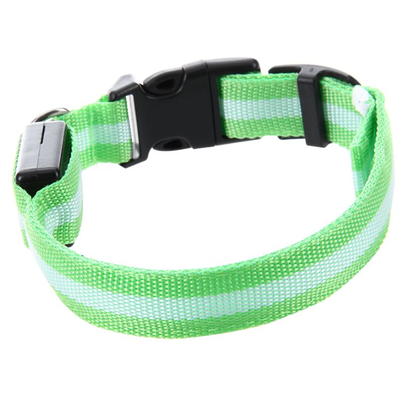 10X-Glow-LED-Cat-Dog-Pet-Collar-Flashing-Light-Up-Safety-Collar-Red-M-N9N6 thumbnail 26