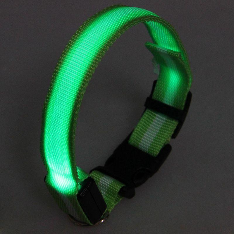 10X-Glow-LED-Cat-Dog-Pet-Collar-Flashing-Light-Up-Safety-Collar-Red-M-N9N6 thumbnail 27