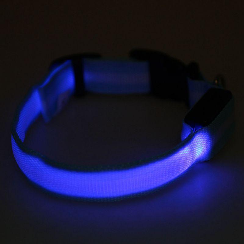 10X-Glow-LED-Cat-Dog-Pet-Collar-Flashing-Light-Up-Safety-Collar-Red-M-N9N6 thumbnail 38