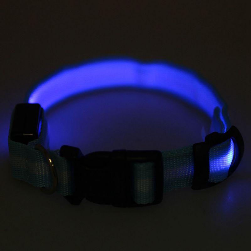 10X-Glow-LED-Cat-Dog-Pet-Collar-Flashing-Light-Up-Safety-Collar-Red-M-N9N6 thumbnail 39