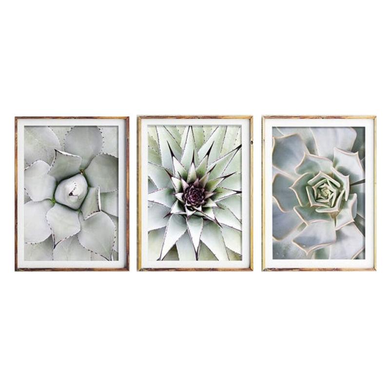 5X-3-Stuecke-Schoene-pflanze-Kaktus-Grosse-Groesse-HD-Moderne-Home-Decor-Wa-O9R4 Indexbild 3
