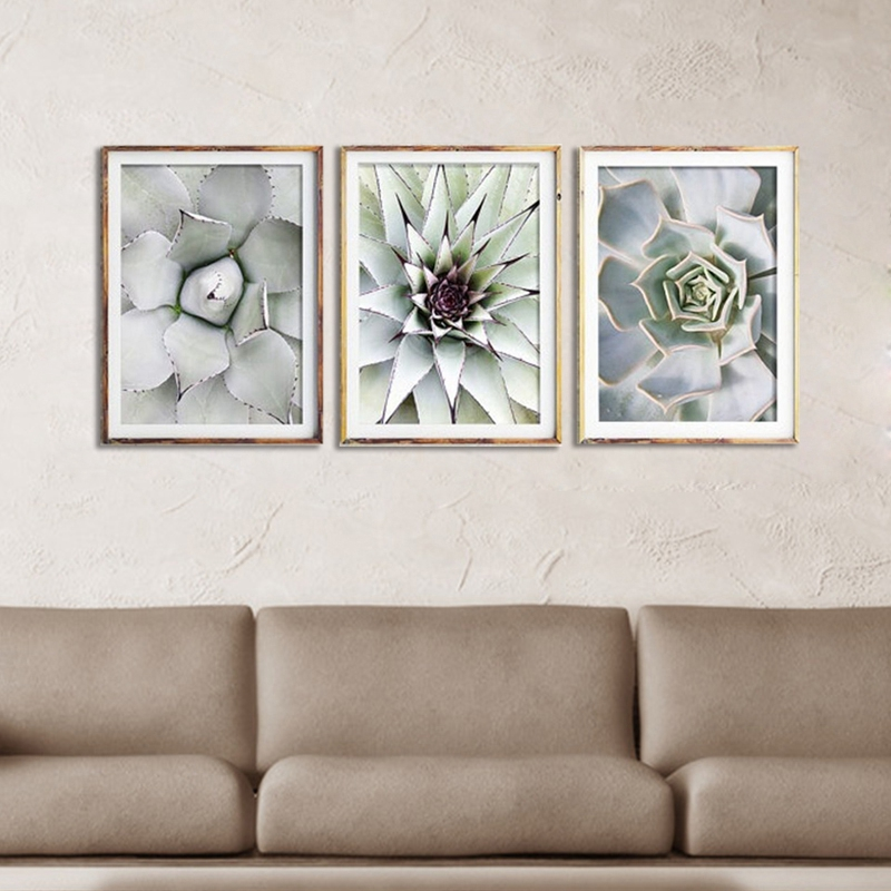 3-Stuecke-Schoene-pflanze-Kaktus-Grosse-Groesse-HD-Moderne-Home-Decor-Wanda-P5V9 Indexbild 6