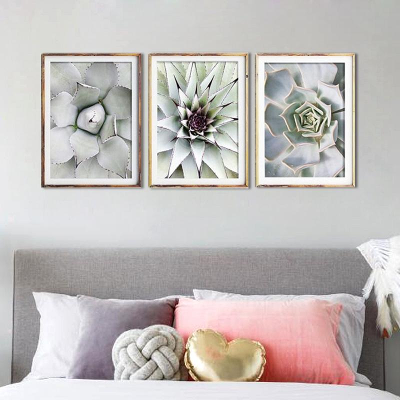 3-Stuecke-Schoene-pflanze-Kaktus-Grosse-Groesse-HD-Moderne-Home-Decor-Wanda-P5V9 Indexbild 7