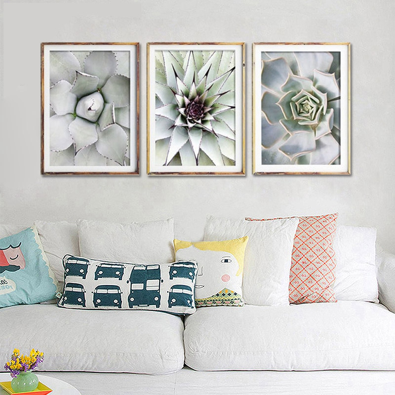 3-Stuecke-Schoene-pflanze-Kaktus-Grosse-Groesse-HD-Moderne-Home-Decor-Wanda-P5V9 Indexbild 9
