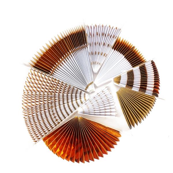 8-piezas-set-ventilador-de-papel-flor-Europea-estilo-fiesta-decoracion-W9F8 miniatura 6