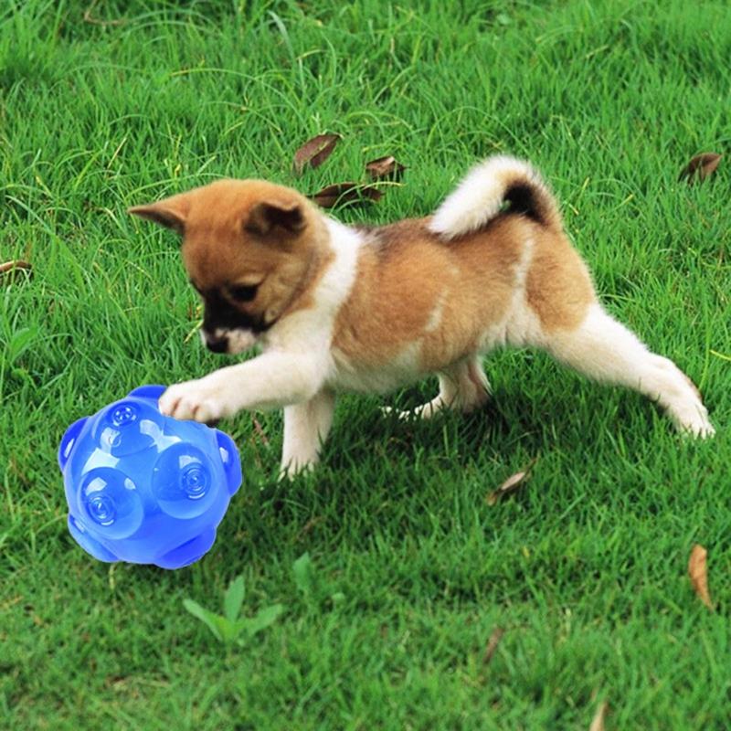1X-mascotas-TPR-Molienda-mordedura-duradera-Bola-de-juguete-con-sonido-A9K8 miniatura 6