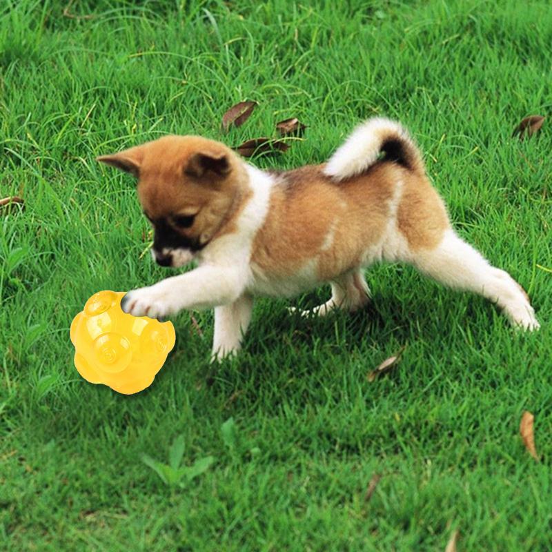 1X-mascotas-TPR-Molienda-mordedura-duradera-Bola-de-juguete-con-sonido-A9K8 miniatura 15