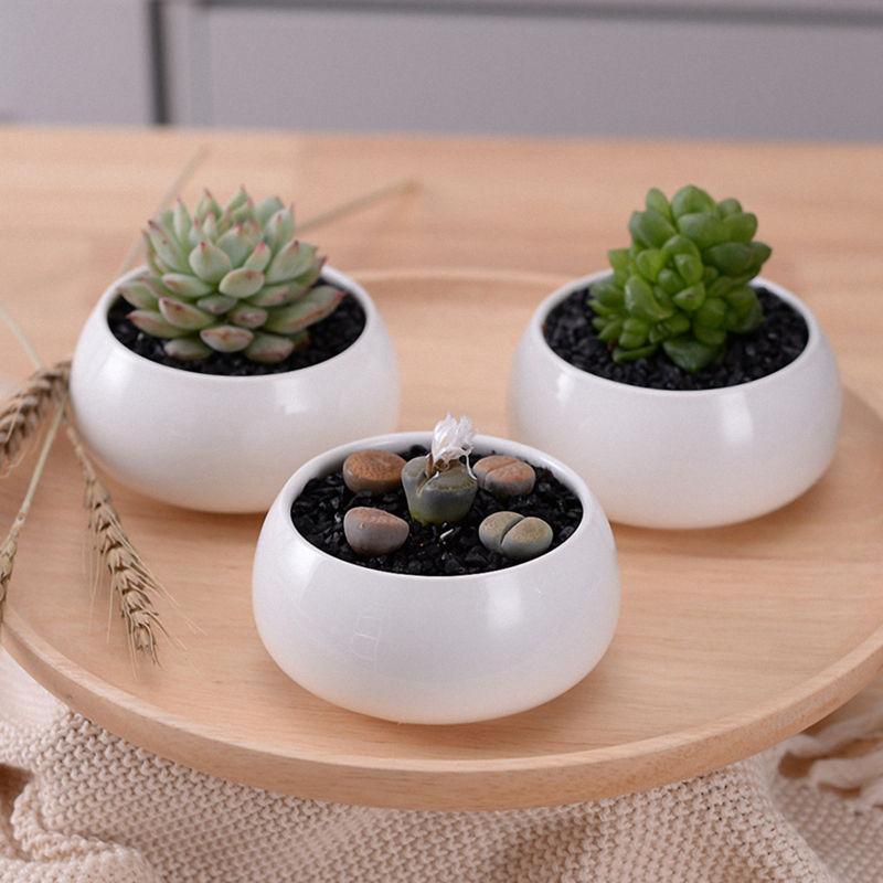 Dekorative Kleine Runde Sukkulenten Topf 3 Tier Bambus Stand Fenster