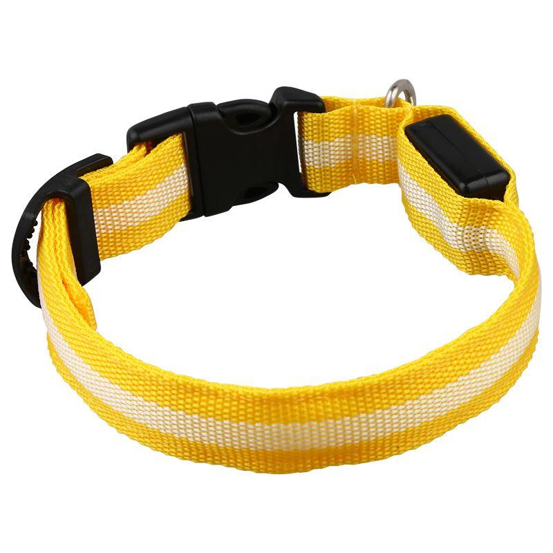 10X-Glow-LED-Cat-Dog-Pet-Collar-Flashing-Light-Up-Safety-Collar-Red-M-N9N6 thumbnail 31