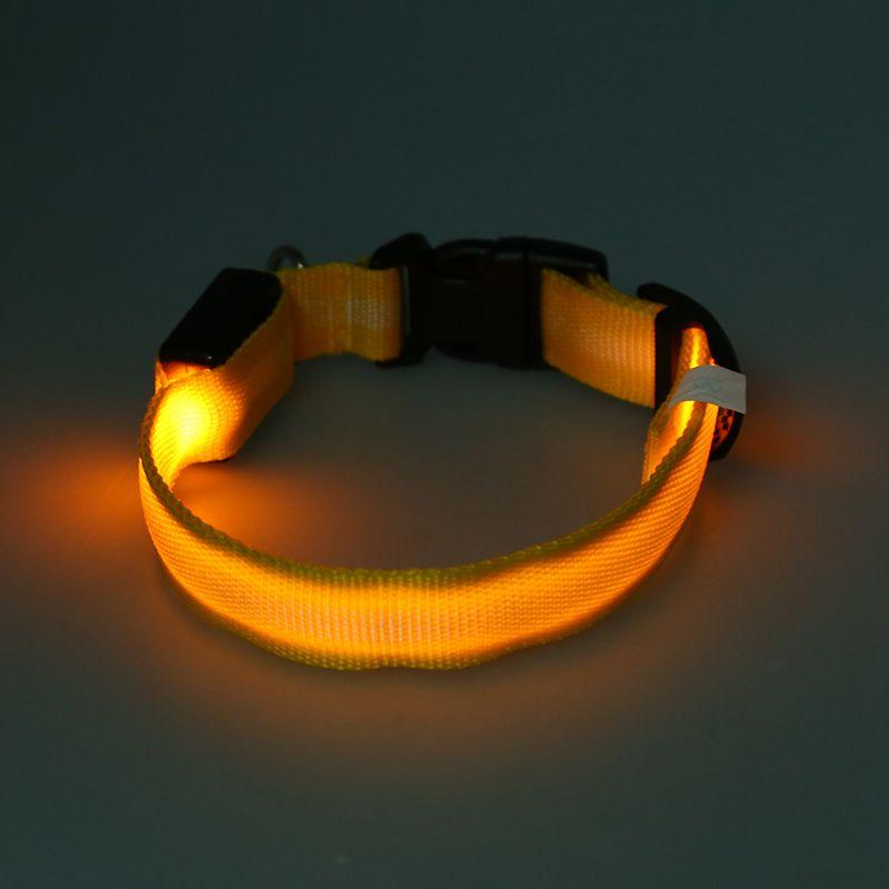 10X-Glow-LED-Cat-Dog-Pet-Collar-Flashing-Light-Up-Safety-Collar-Red-M-N9N6 thumbnail 33