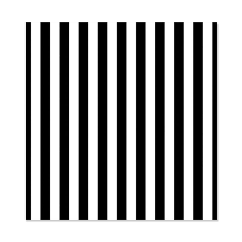 8x8ft Vinyl Black White Stripes Backdrop Photography Background