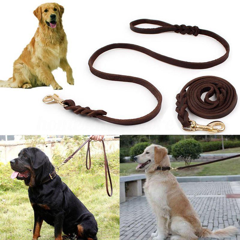 6X(2M Long Leather Braided Pet Dog Walk Traction Collar Strap Training Leas T2Z8