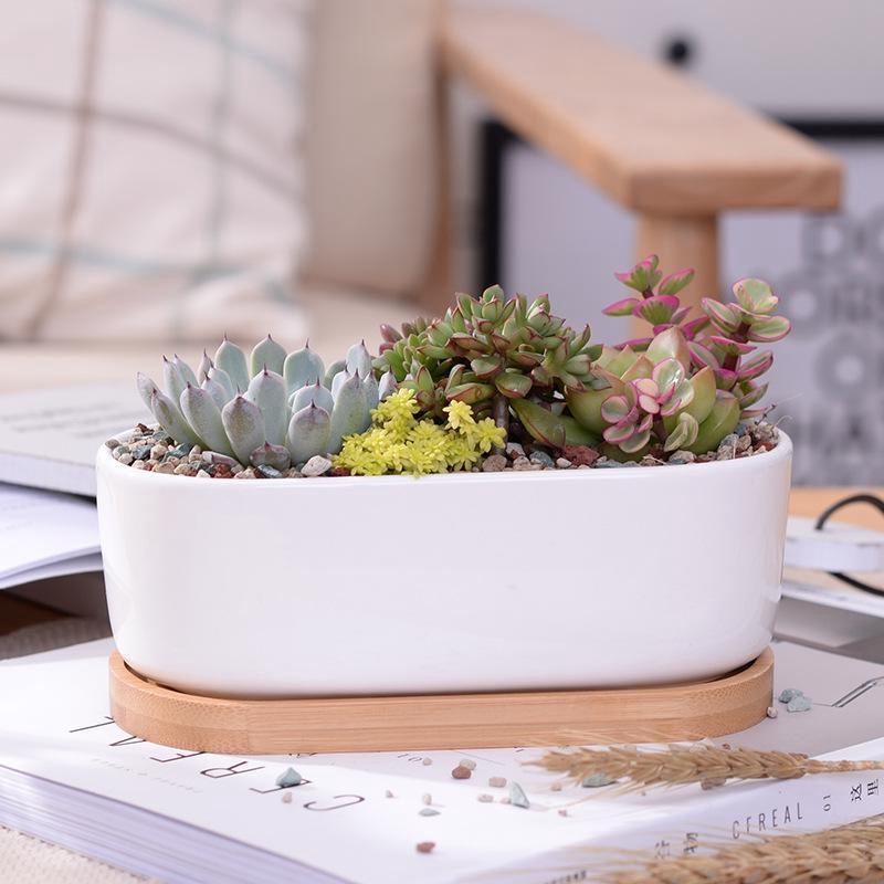 6x pots de fleurs blanches en ceramique pots de fleurs. Black Bedroom Furniture Sets. Home Design Ideas