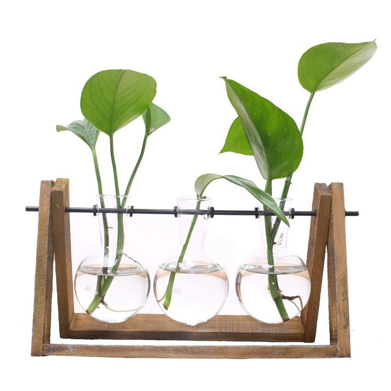 Plant Terrarium With Wooden Stand 3pcs Glass Vase Holder For Home