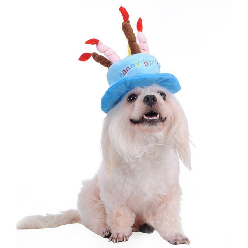 Chiens-Pet-Chien-Anniversaire-Chapeau-Chapeau-avec-des-Gateaux-Bougies-Conc-Y7G2 miniature 3