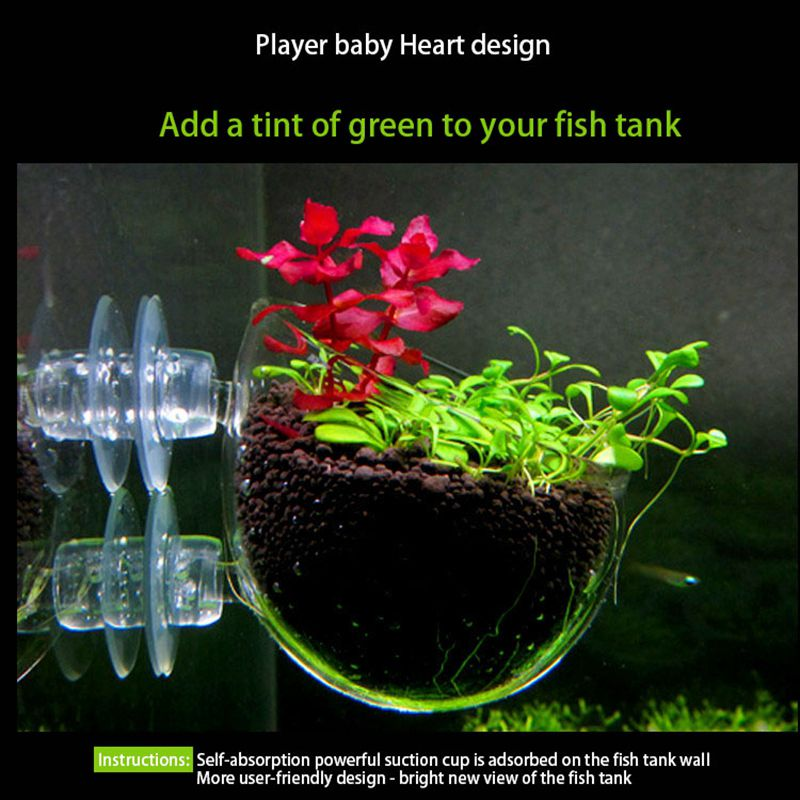 Aquarium-Samen-Wasser-Gras-Toepfe-Einfache-aquatische-lebende-Pflanzen-Fisc-U9I8