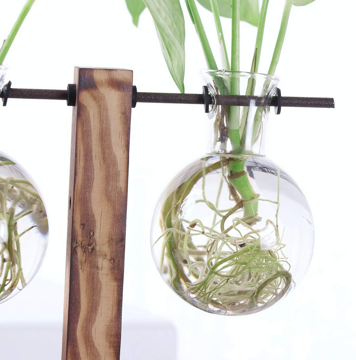 Creative-vase-plant-glass-hydroponic-container-farm-decorative-flowerpot-ho-S1A4
