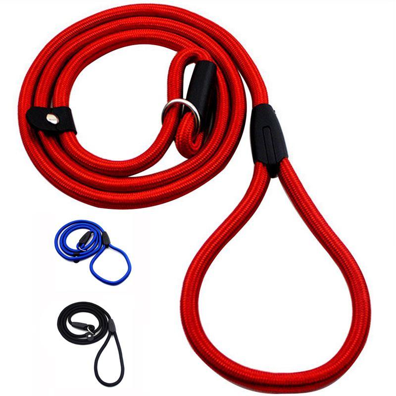 2X-Robuste-Nylon-corde-de-collier-pour-animaux-de-compagnie-Formation-de-gli-S7 miniature 12