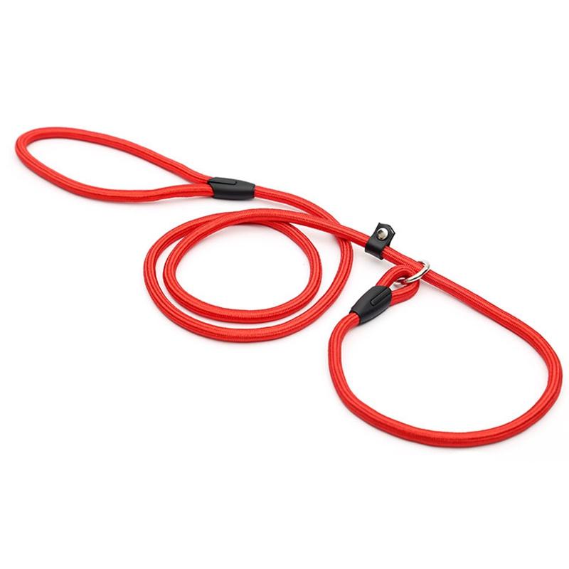 2X-Robuste-Nylon-corde-de-collier-pour-animaux-de-compagnie-Formation-de-gli-S7 miniature 13