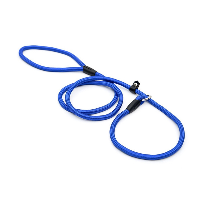 2X-Robuste-Nylon-corde-de-collier-pour-animaux-de-compagnie-Formation-de-gli-S7 miniature 22