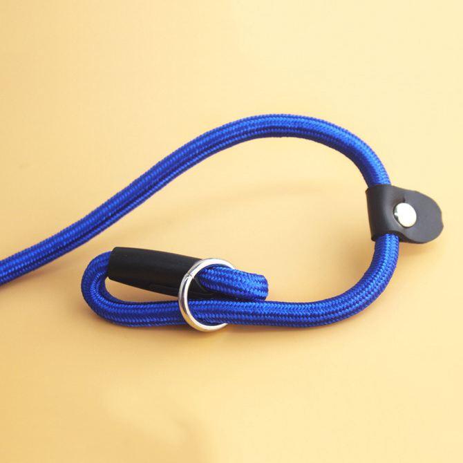 2X-Robuste-Nylon-corde-de-collier-pour-animaux-de-compagnie-Formation-de-gli-S7 miniature 23