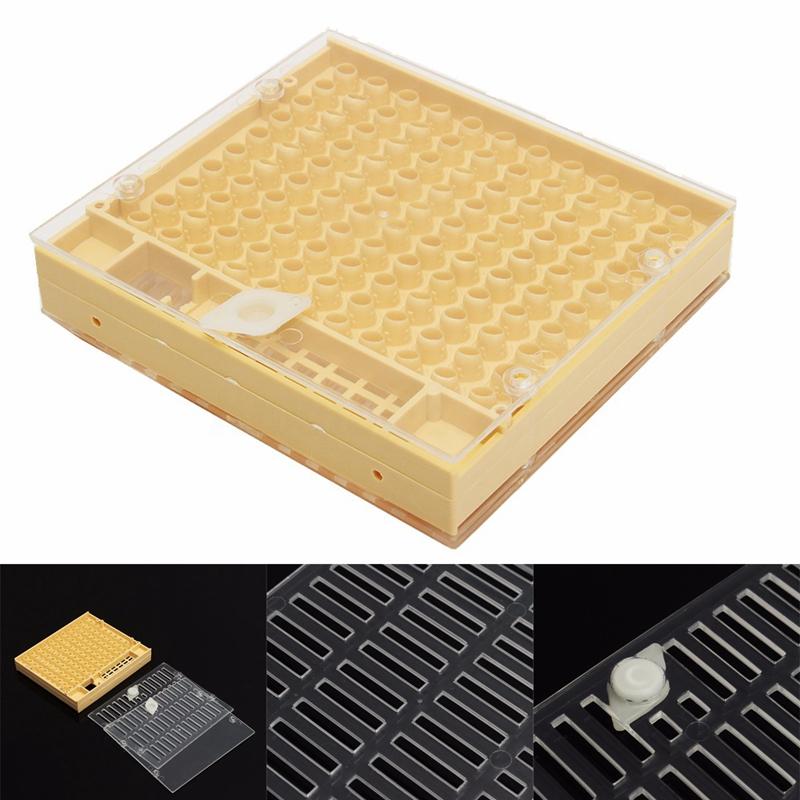 Systeme d'elevage de reine des abeilles Boite d'elevage+50 Kit de coupes de c FR