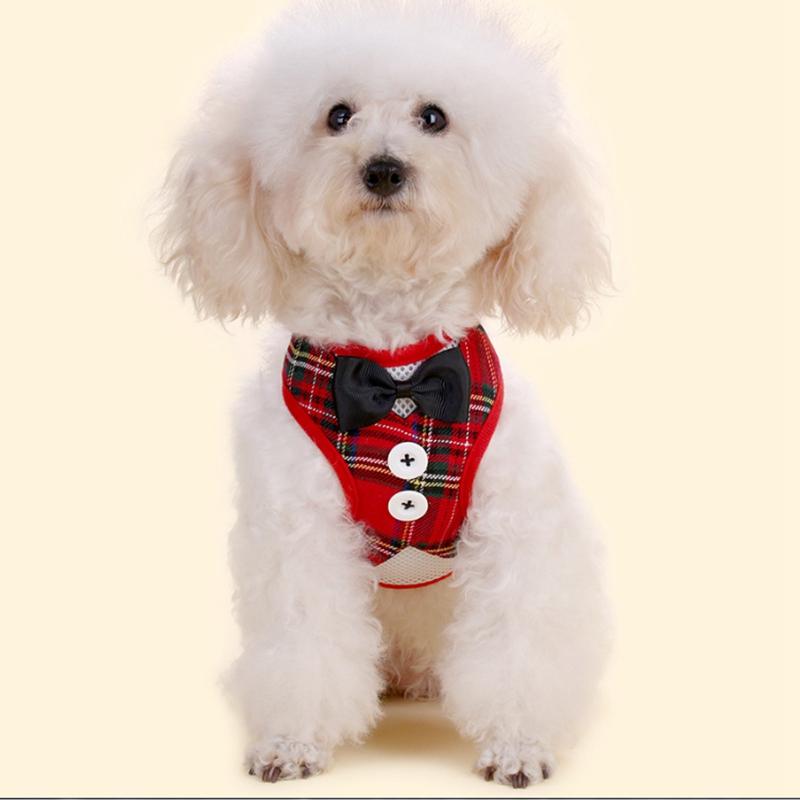 Gilet-pour-chien-Laisse-harnais-de-chien-pour-les-petits-chiens-moyens-Robe-Q2T3 miniature 20
