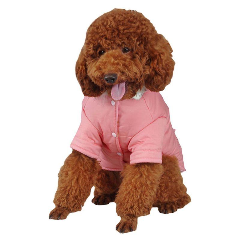 brigo-con-capucha-Mini-chaqueta-de-perro-linda-Traje-de-algodon-Teddy-Inform-PB miniatura 4